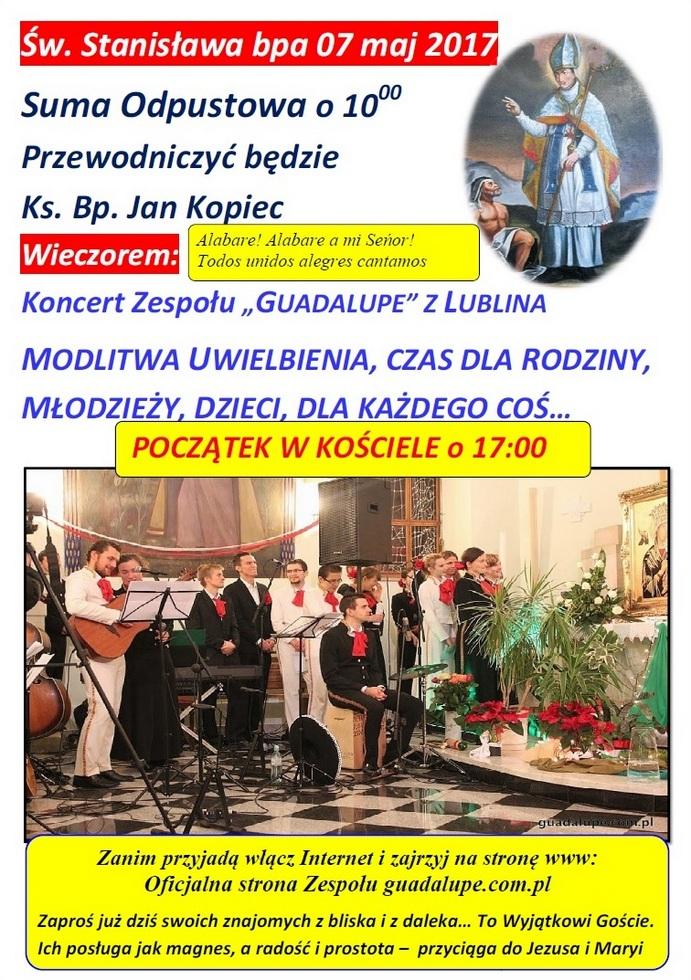 Koncert w Fałkowicach.jpeg