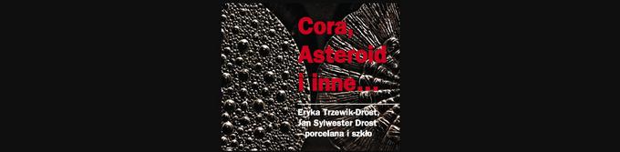 """Wystawa """"Cora, Asteroid i inne… Eryka Trzewik-Drost, Jan Sylwester Drost – porcelana i szkło"""".jpeg"""