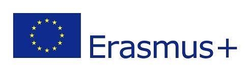 EU flag-Erasmus+_vect_POS mini.jpeg