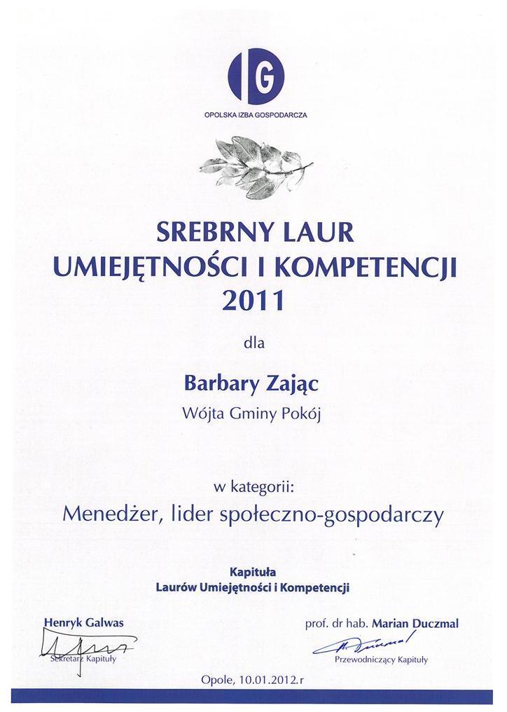 Srebrny_Laur_Umiejętności_i_Kompetencji_2011.jpeg