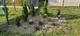 Galeria zielony zakątek