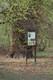 dąb szypułkowy wchodzący w skład pomnika przyrody o numerze rej.155, fot.Paulina Duraj .jpeg