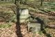 5 ruina popiersia księcia Wilhelma.jpeg