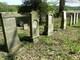 macewy na cmentarzu żydowskim w Pokoju fot. Elżbieta Gosławska.jpeg