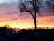 Agata Domaradzka - Pokój, zachód słońca.jpeg